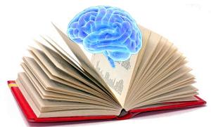 Libro con cervello